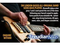 Original pop rock group in SW London requires bassist