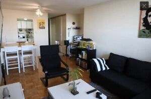 Spacious shared one bedroom apartment for rent
