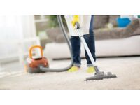 Domestic cleaner within Cambridge-DBS checked