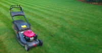 Grass cutting // Snow Removal