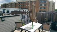 2 Br/1.5 bath townhouse with roof top patio (Queen/Dufferin)