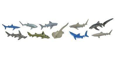 (Sharks 10 pieces Safari Ltd Toob Mako Tiger Hammerhead Blue Thresher #697104)