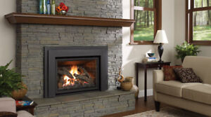 Wanted Gas fireplace insert