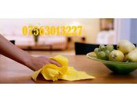 Trust Cleaner 07563013227