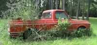 Looking for old truck that is rotting away