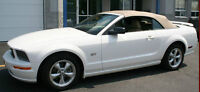 Wanted: 2007-2009 white Ford Mustang GT Convertible