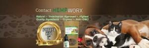 Natural, Organic Pain Relief for Pets | Anxiety, General Health | Superior Holistic Product Line