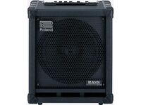 Roland cube bass 100w amp.