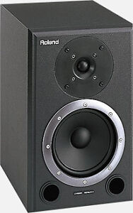 Roland DS-90A Monitor Speakers