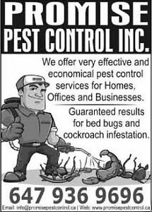 PEST CONTROL AT LOWEST PRICE Oakville / Halton Region Toronto (GTA) image 1
