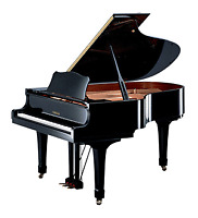 Piano and Music Theory Lessons available this fall :)