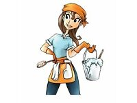 Domestic Cleaner covering Howden, Goole, Brough and surrounding areas.