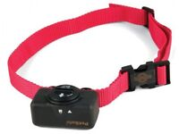 Lost - Dog Bark Control Collar