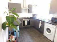 4 bedroom student property, 5 Halsbury Road, Kensington, L6 6DG