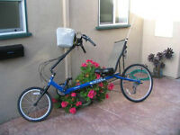 For sale LWB Recumbent bicycle