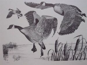 online sale  BIRDS / GEESE IN FLIGHT...Authentic Numbered Print