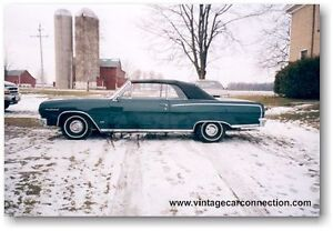 Antique and Collector Car Appriasals - Owen Sound and Area