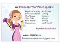 Private Domestic Cleaning. We can make your place sparkle..