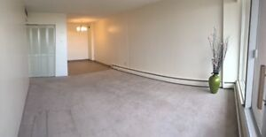 Beautiful 9th Floor Downtown Pet Friendly 1 Bedroom for April!