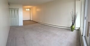 Renovated 12th Floor Downtown Pet Friendly 1 BR for July!