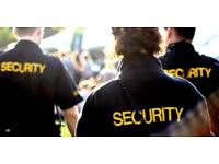 Tech Cobra Ltd - Security company Ealing From £ 9.70 p/H - Event security Security services Ealing