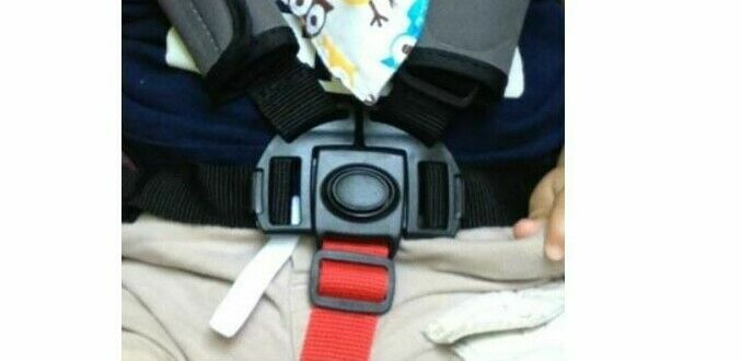 5 point clip buckle safety harness straps