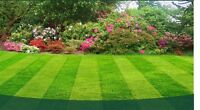 Property Services and Lawn care at affordable prices