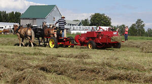 Loads and Loads of Horse Drawn Equipment for sale from ADHS