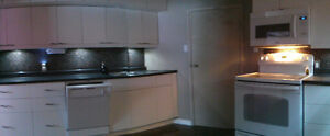 Bright Modern 2 Bdrm Basement Suite - May 1