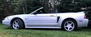 2000 Convertible Ford Mustang GT