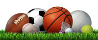 Try Out New Games/ Activities at Halifax PLAYS Zany Sports!
