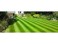 Garden services,grass cutting,hedge trimming-other garden maitenances!