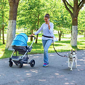 hands free double dog Leash Dual Bungees Retractable