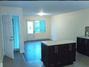 Fully renovated 3 1/2 in ville st. Laurent! $800