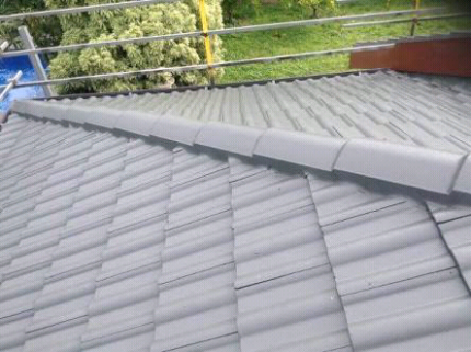 Roof painter available  for give u free  quote Epping Whittlesea Area Preview