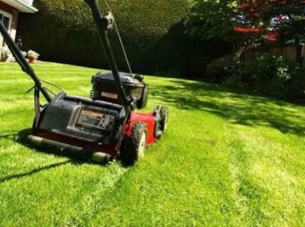 Grass Cutting/Lawn Mowing