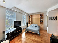 downtown Mtl studio, near McGill university,amazing view