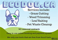 Eco-Conscious Grass Cutting / Leaf Raking / Pet Waste Cleanup