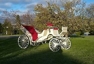 **NEW PRICE**VIS-A-VIS carriage (DEMO) mint condition