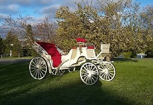 VIS-A-VIS Carriage (DEMO) mint condition