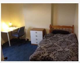 Room for vegan or vegetarian in Winton Bournemouth
