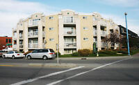 SUNNYSIDE, Great 1 Bedroom Units Available