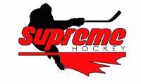 Free Mini Hockey Camp