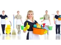 Offer domestic cleaning