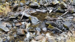 Eakin Creek (Three Mile) Placer Gold Claim for Sale $2400