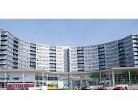 Blenheim center *Short let* Flat share in 2 Bed - Hounslow