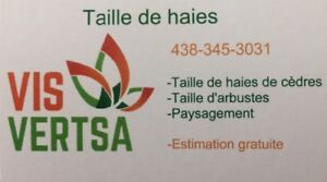 Taille de vos haies, arbustes, buissons (Longueuil)