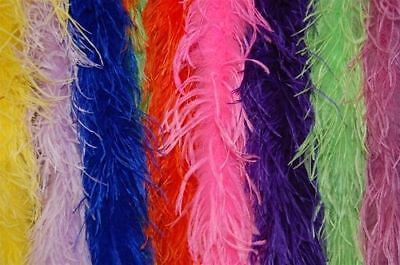 2 PLY OSTRICH FEATHER 2-Yard BOA Top Quality 20+ MANY COLORS Costumes/Haloween