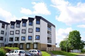 1 BED UNFURNISHED FLAT IN THE FURLONGS, HAMILTON, ML3 - IDEAL FOR COMMUTING/UNI/COLLEGE/SHOPS ETC