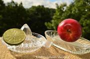 Zitruspresse Glas